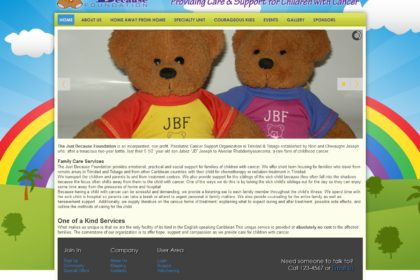 The Just Because Foundation Website